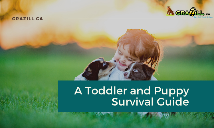 toddler-and-puppy